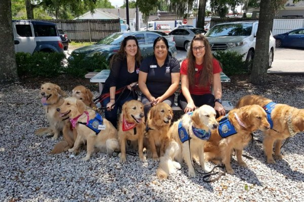 Comfort dogs in Orlando