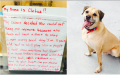 Homeless woman leaves dog at park with note