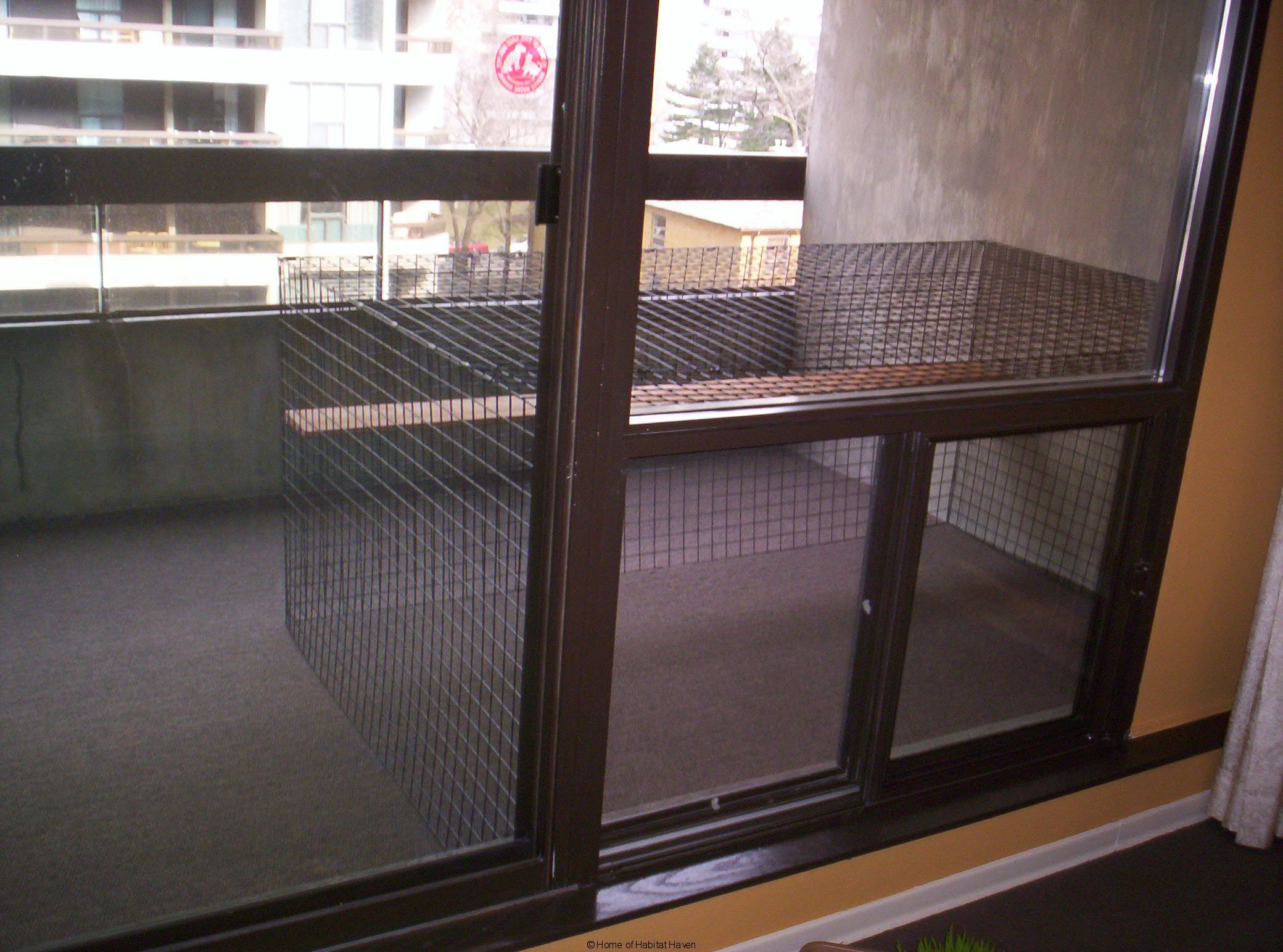 Does Your Cat Love Your Balcony Or Patio Keep Them Safe